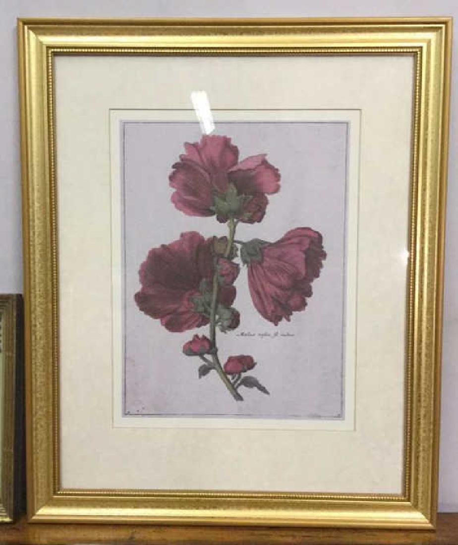 Lot 2 Framed Botanical Prints - 4