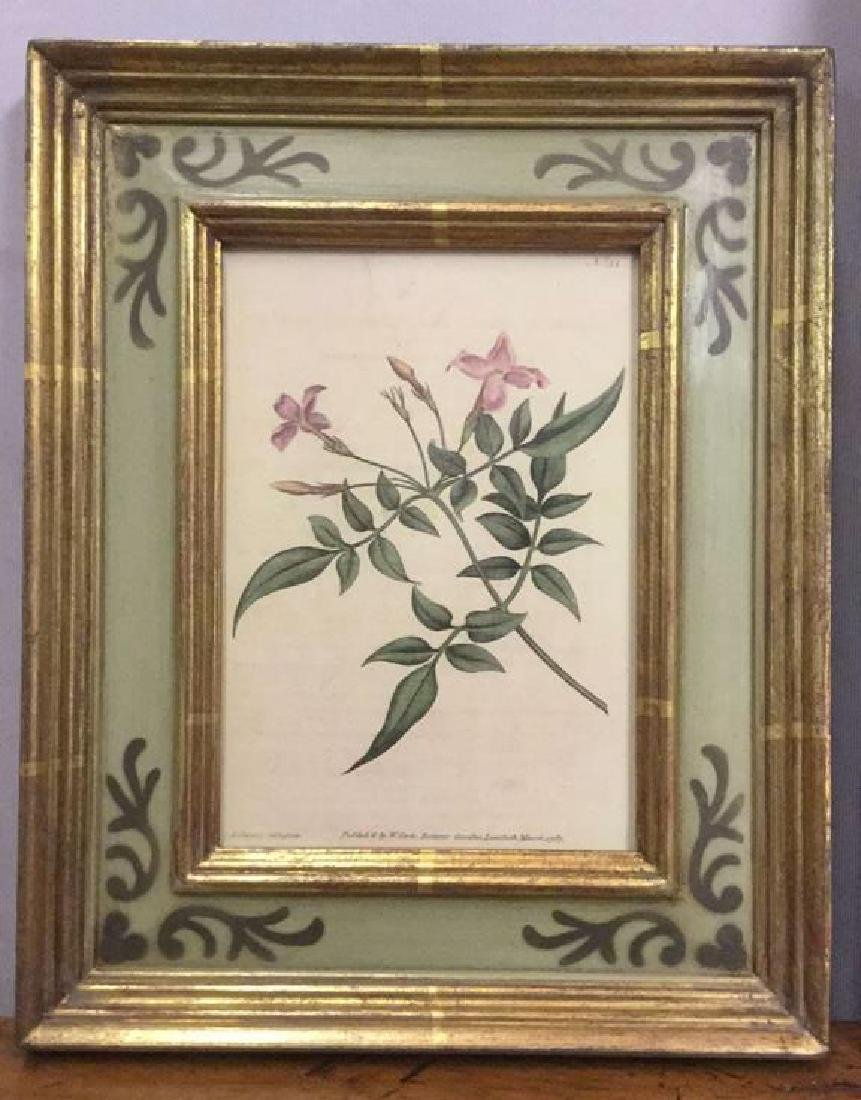 Lot 2 Framed Botanical Prints - 5