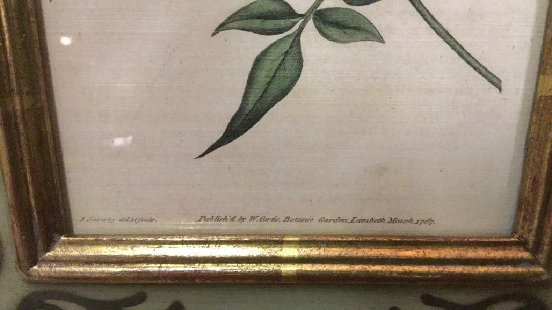 Lot 2 Framed Botanical Prints - 6