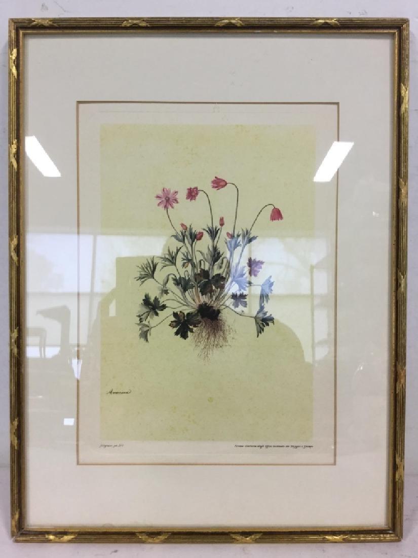 Framed & Matted Floral Print - 2