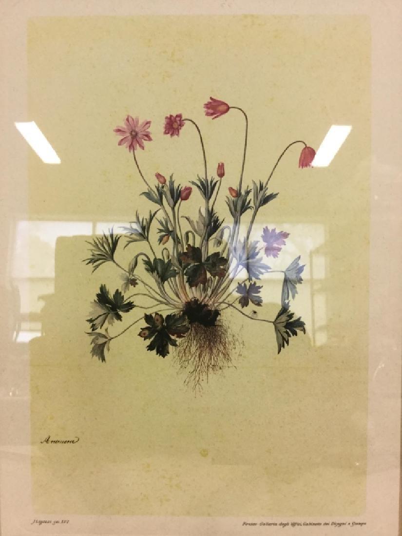 Framed & Matted Floral Print - 3