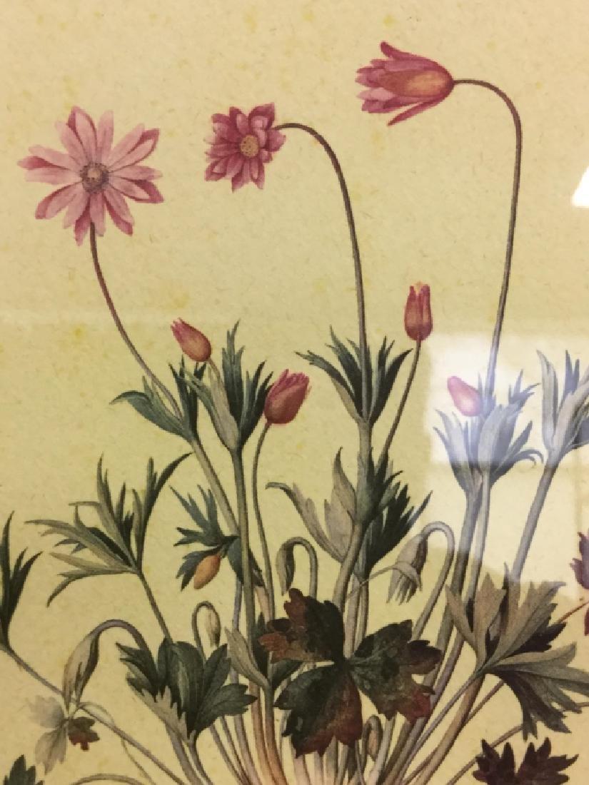 Framed & Matted Floral Print - 4