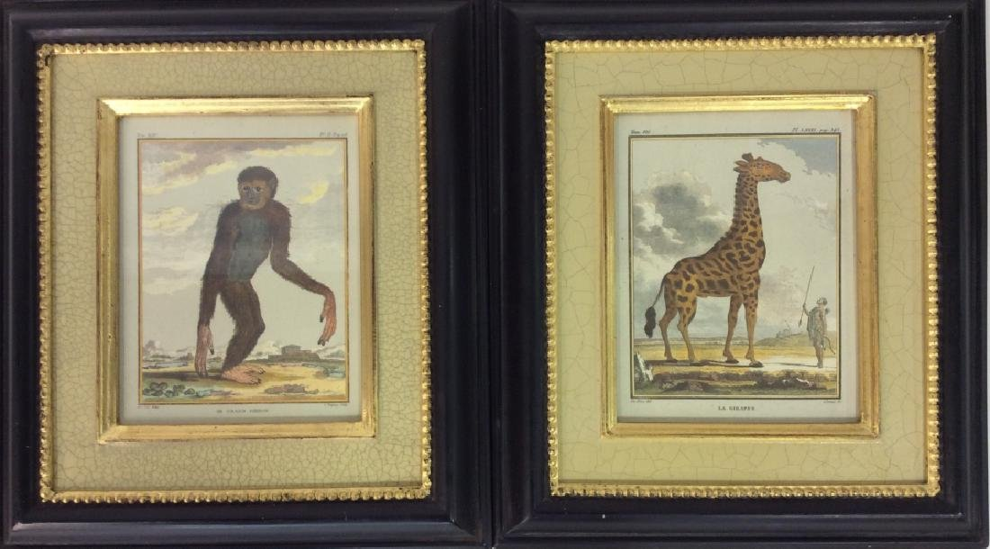 Pair Framed Animal Print Artwork - 2