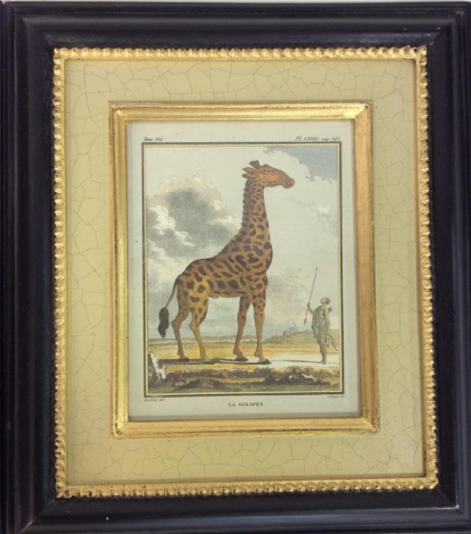 Pair Framed Animal Print Artwork - 3