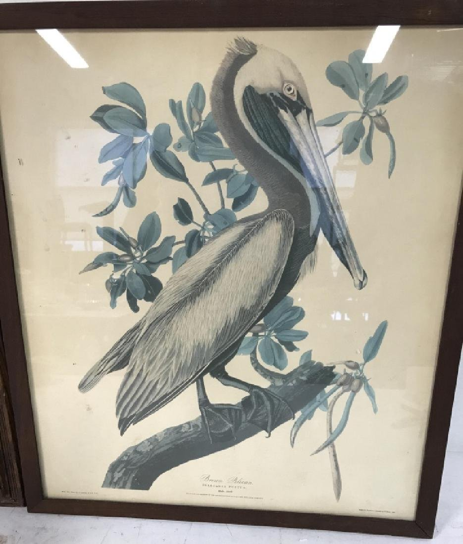 Group Lot of two Bird Prints - 2