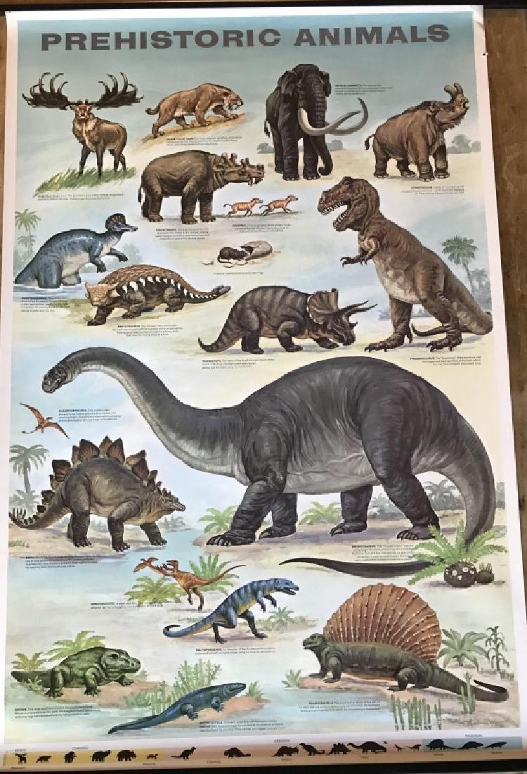 1964 Prehistoric Animal Poster Education Poster