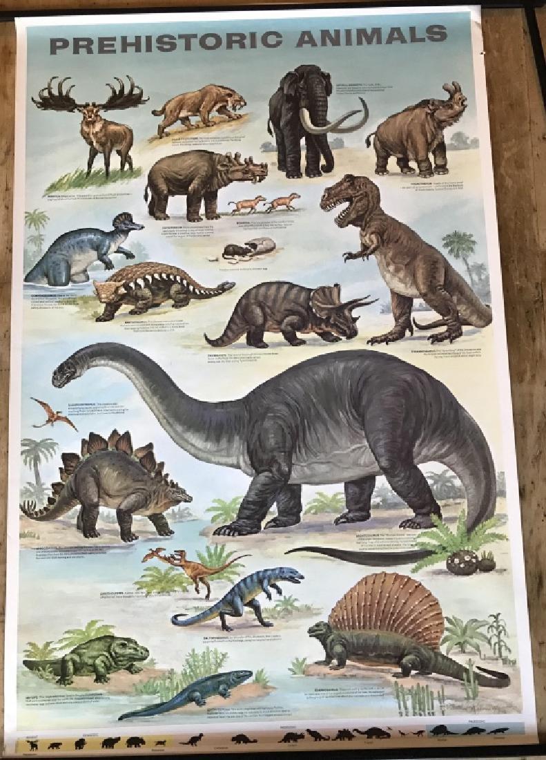 1964 Prehistoric Animal Poster Education Poster - 2