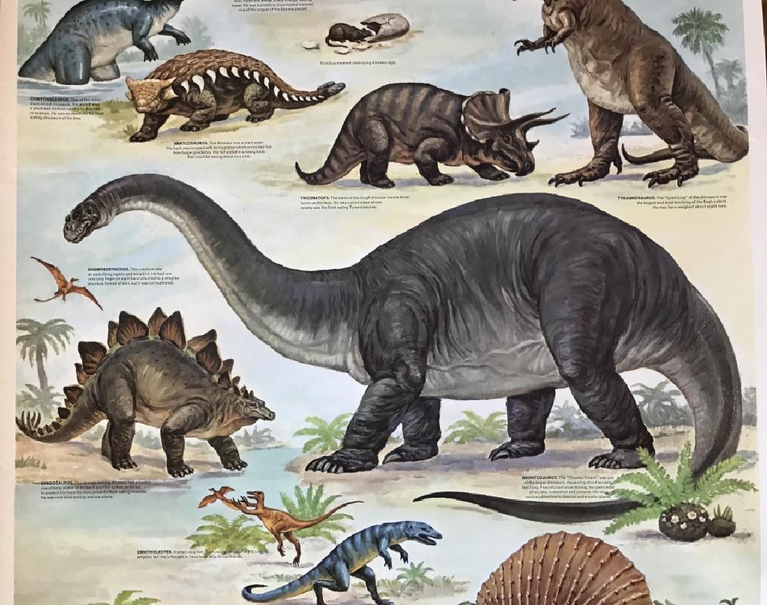1964 Prehistoric Animal Poster Education Poster - 3
