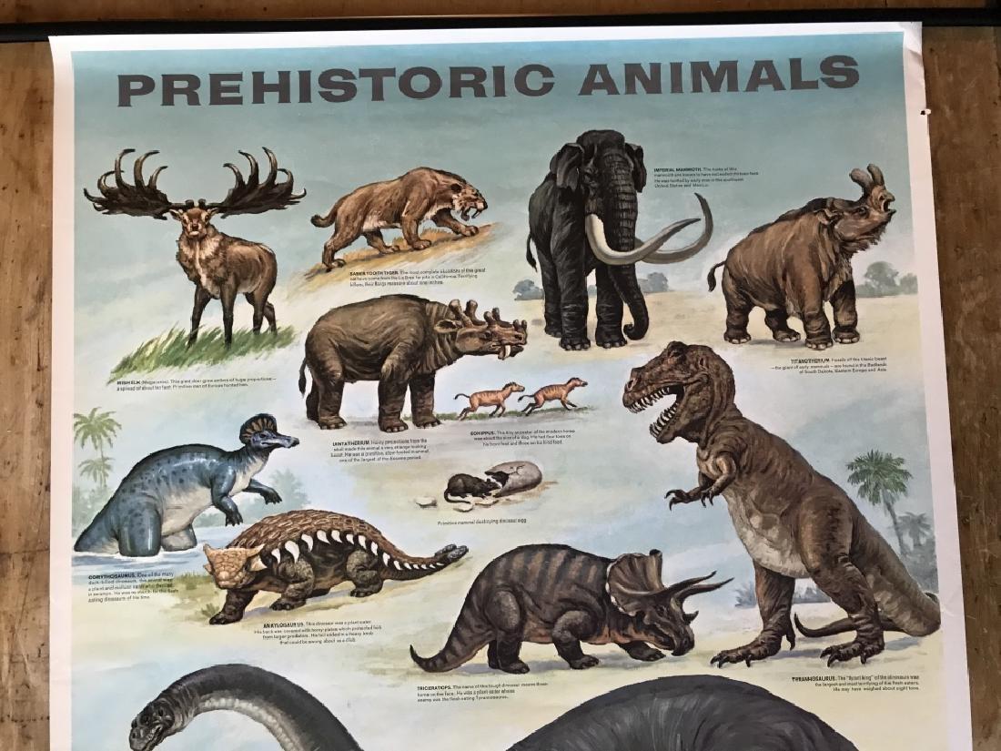 1964 Prehistoric Animal Poster Education Poster - 4