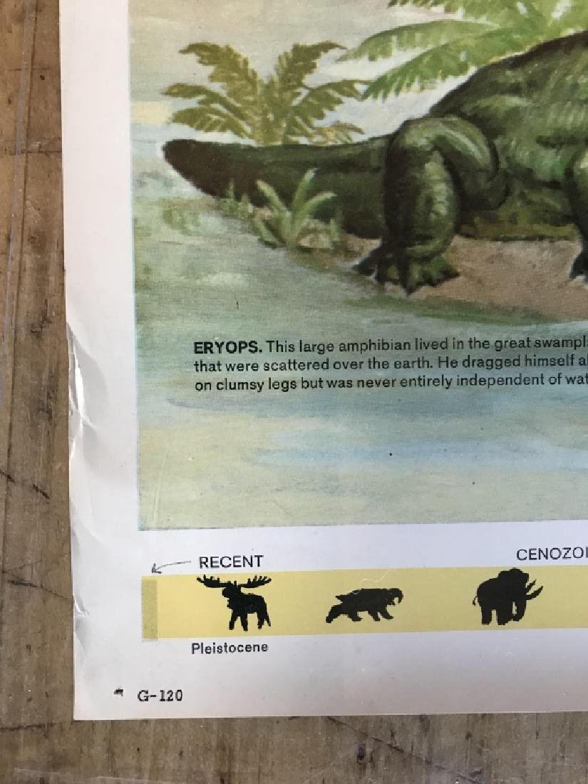 1964 Prehistoric Animal Poster Education Poster - 6