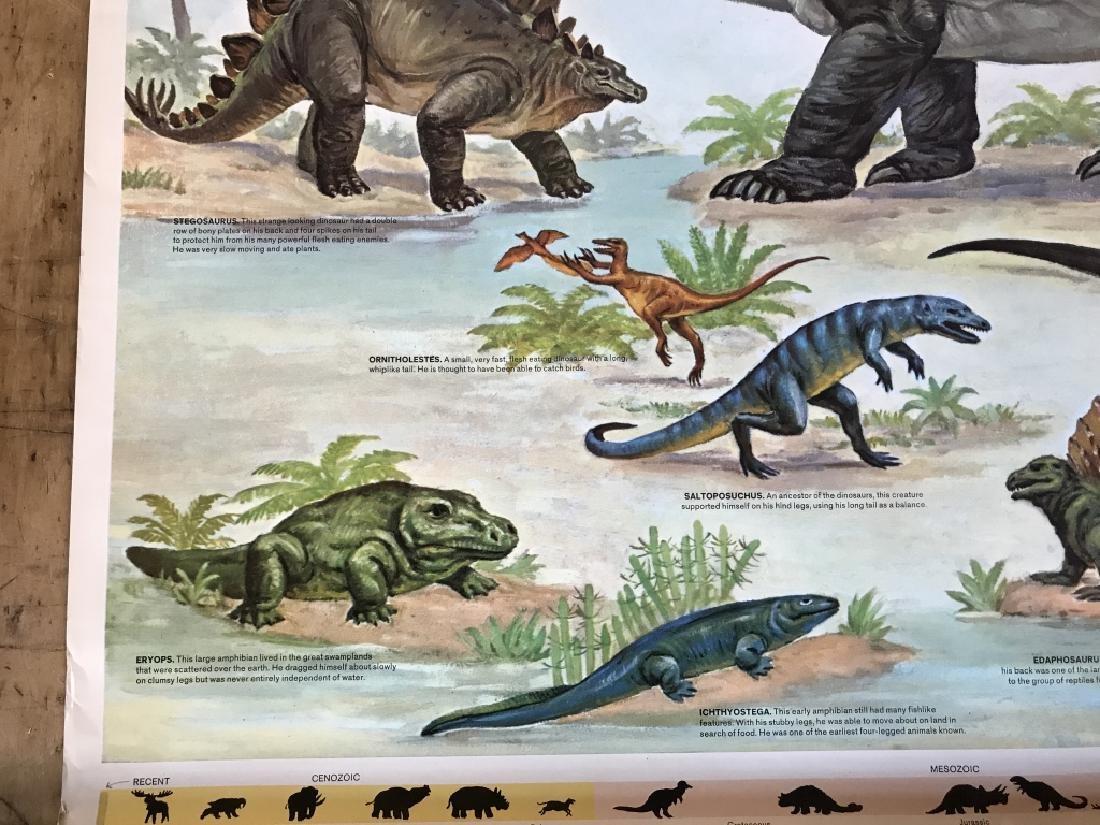 1964 Prehistoric Animal Poster Education Poster - 9