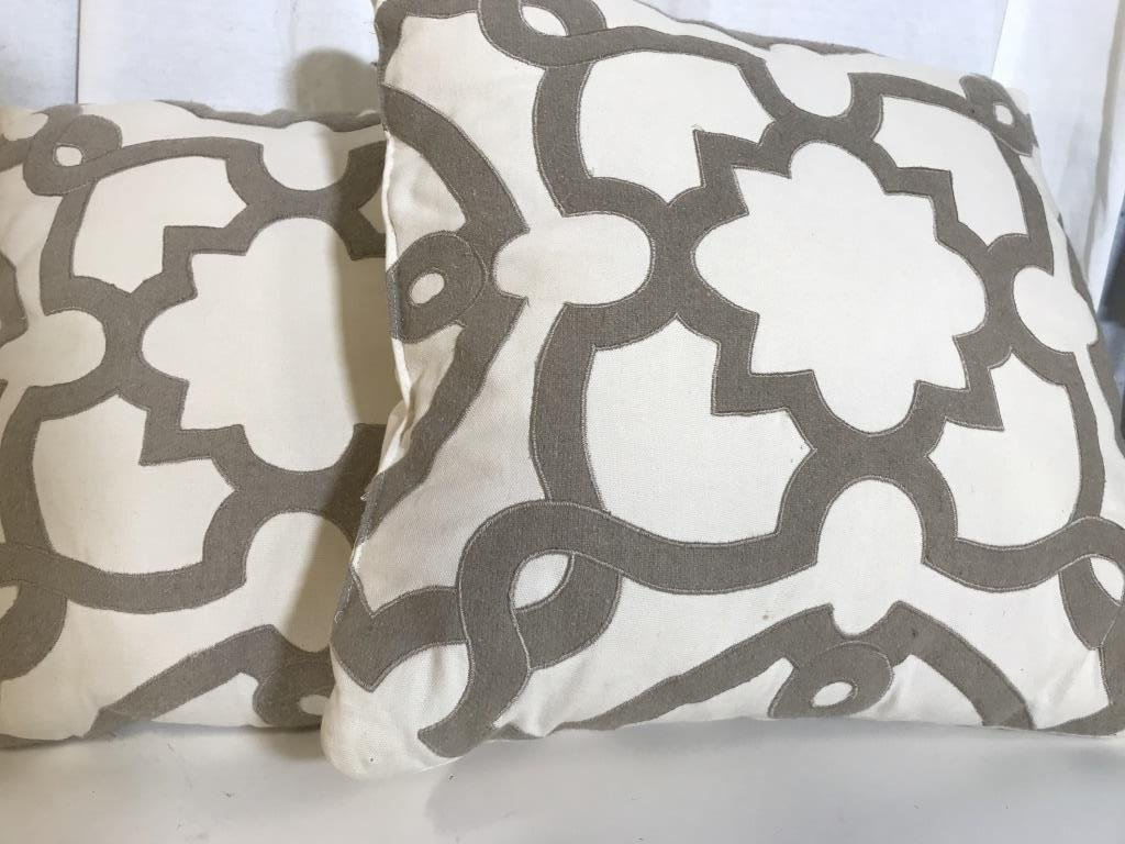 Pair Contemporary Design Throw Pillows