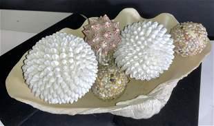 Large Ceramic Clam Shell W/ Shell Ornaments,7 pcs
