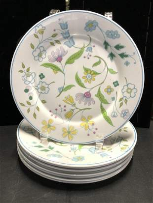 Set 28 SPODE AFTON English Bone China Dinnerware
