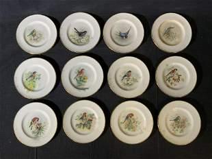 Set 12 Vintage ROYAL WORCESTER Porcelain Saucers