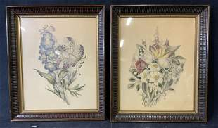 Lot of Two Antique Botanical Lithograph