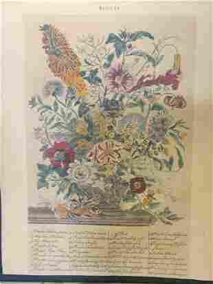 Mounted & Framed Floral Still Life Offset Litho