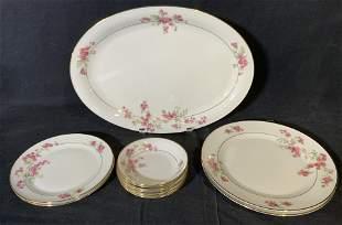 Set 11 TIRSCHENREUTH Porcelain Plates & Saucers