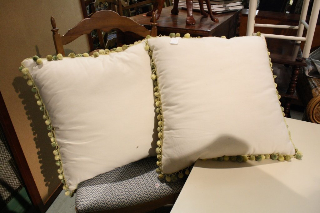 Pair Paisley and trimmed throw pillows