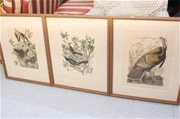 Three  Vintage Autoban Prints
