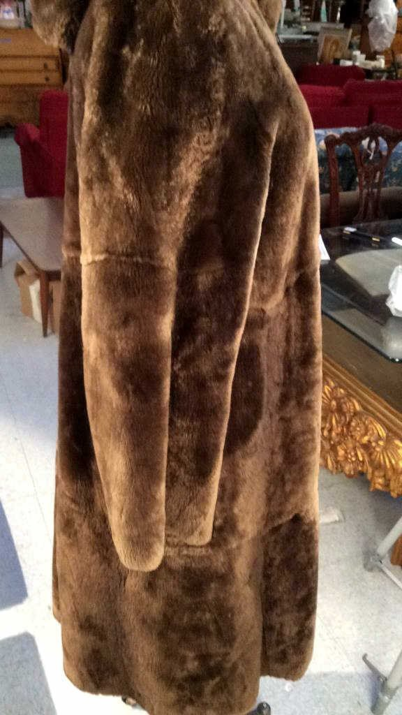 Vintage Nutria Fur Coat - 4