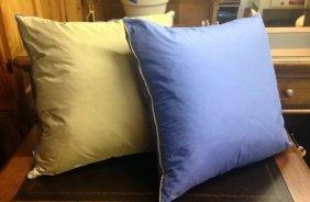 Two Silk And Down Pillows Two Silk And Down Pillows,