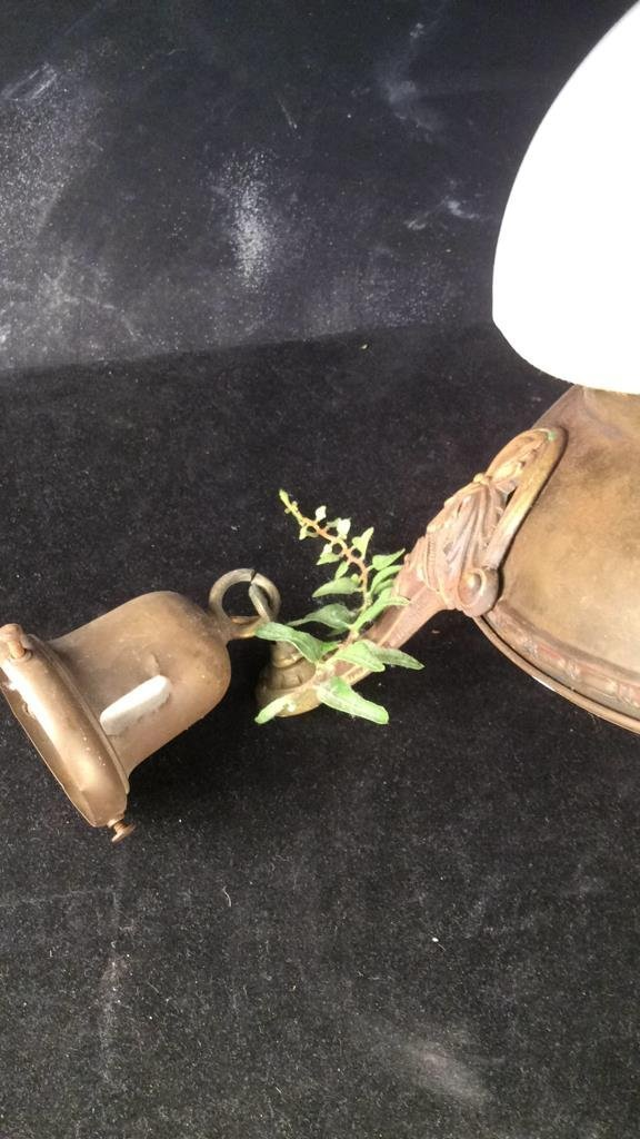 Antique Brass Frame Bells Globe Chandelier - 4