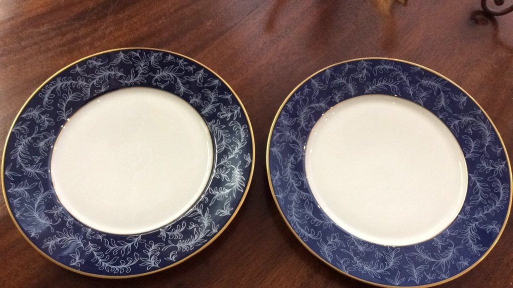 LIMOGES Pair of Plates - 2