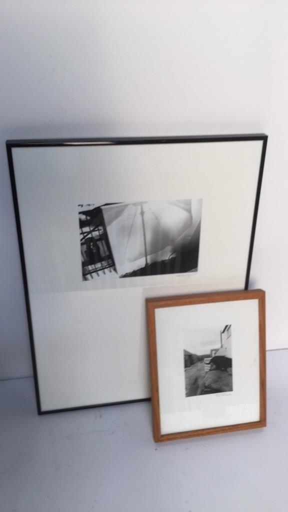 Pair of Black and White Animal Photos