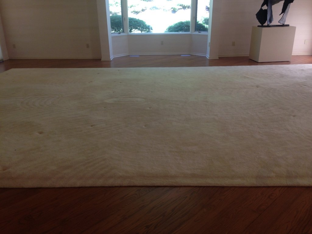 Stark Carpet Corp. Custom White Color Carpet - 4