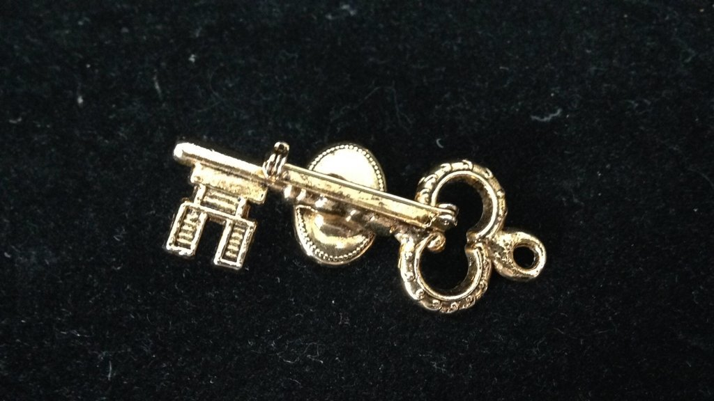 2 Gold Colored Key Shaped Pins - 3