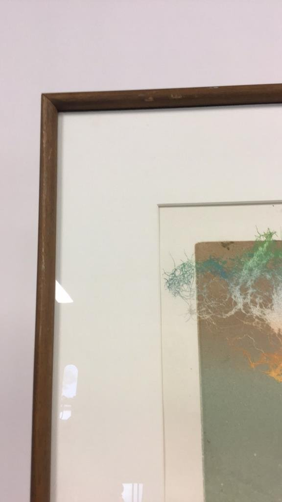 Signed Vintage Lithograph - 6