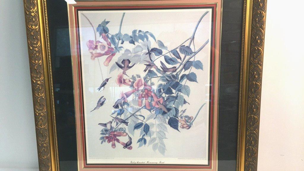 Large Botanical RUBY-THROATED HUMMING BIRD - 2