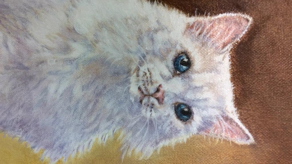 Cat Portrait Oil On Canvas - 5