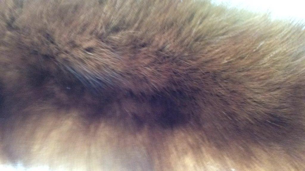 Sable Fur Collar - 2