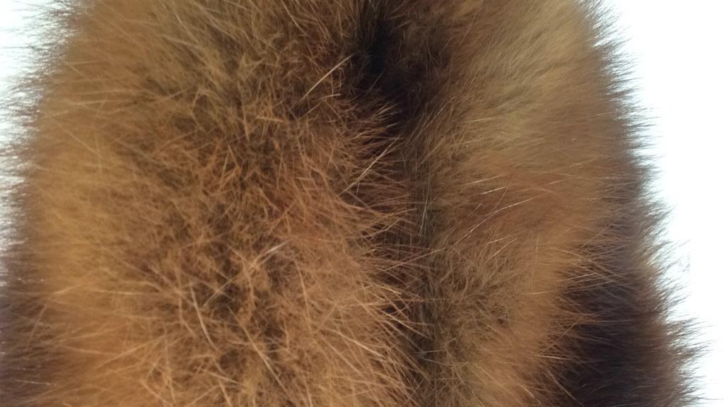 Sable Fur Collar - 9