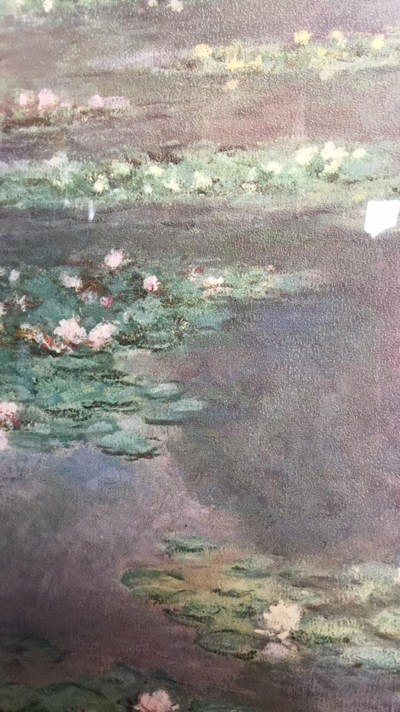 Framed Claude Monet Waterl Lillies Print - 10