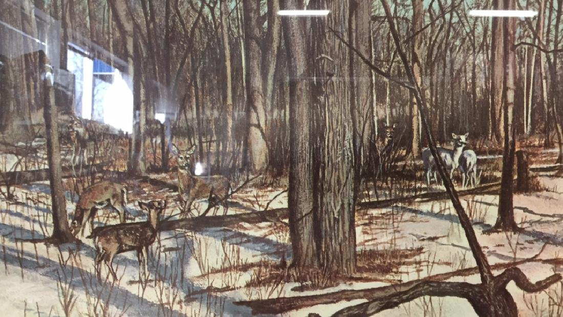 Framed Print Deer In Woods Wood framed and matted print - 3