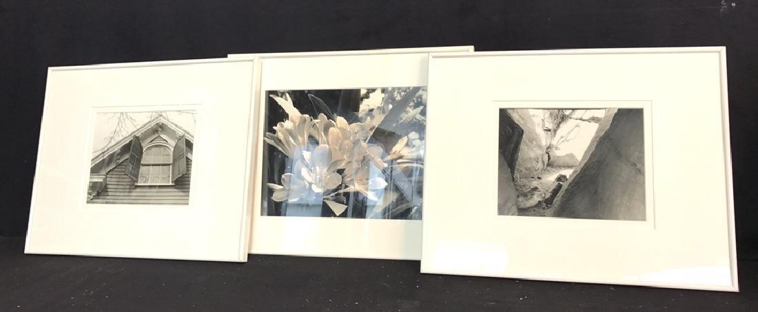 3 Piece White Framed B&W Photographs 3 Piece White