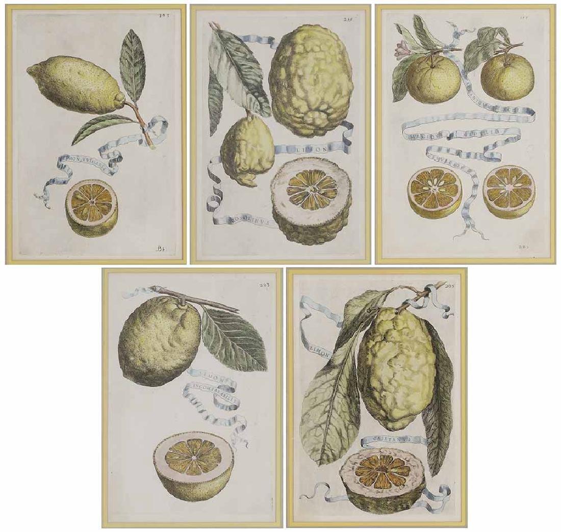 Five Decorative prints