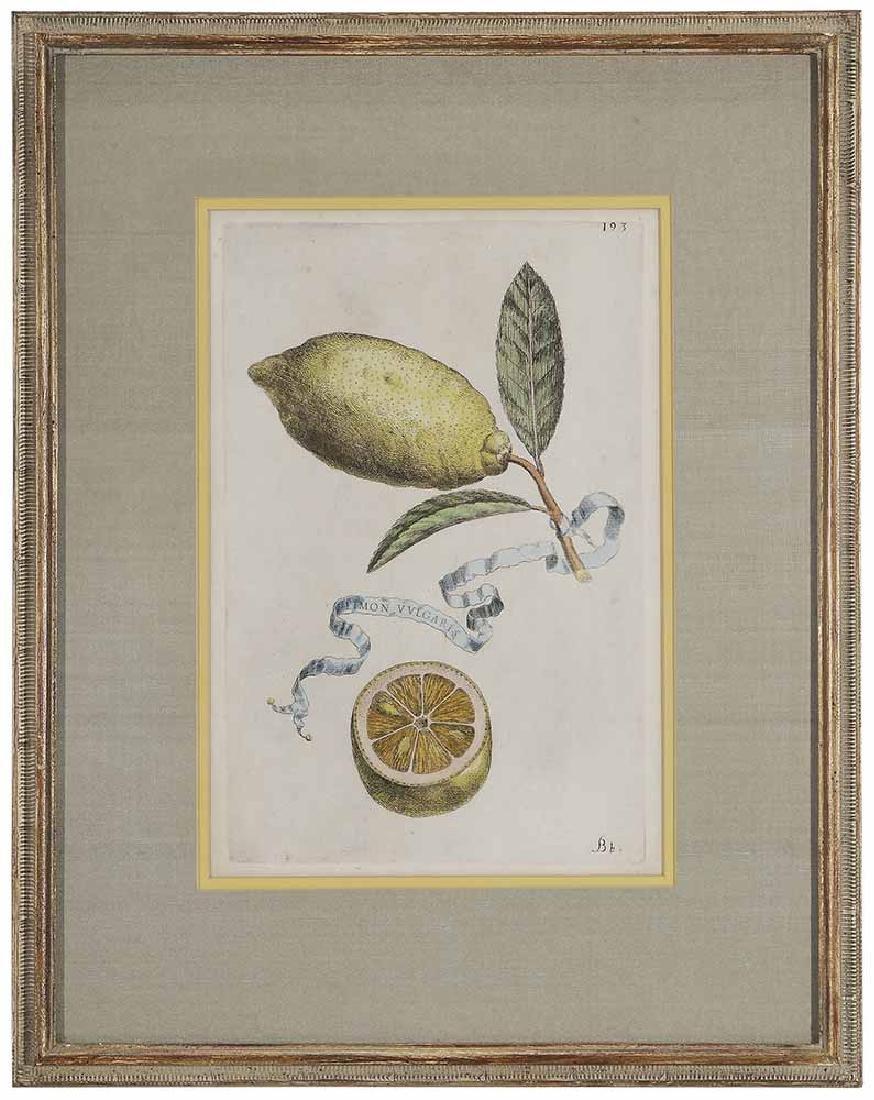 Five Decorative prints - 2