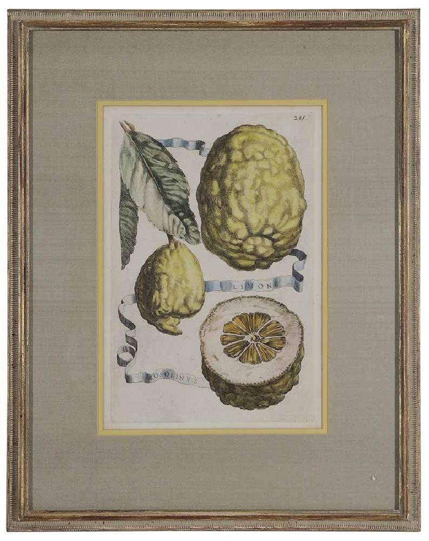 Five Decorative prints - 3
