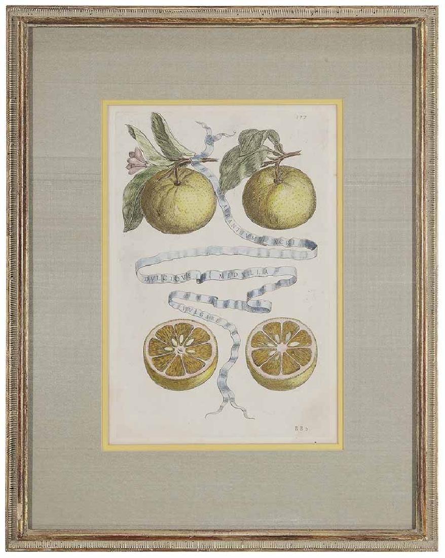 Five Decorative prints - 4