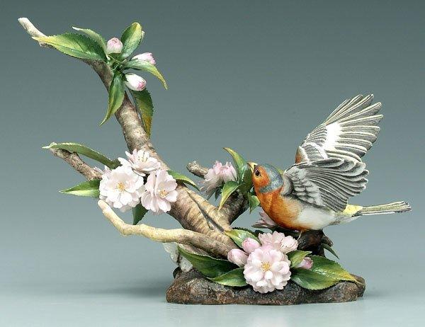 6: Boehm bird group: