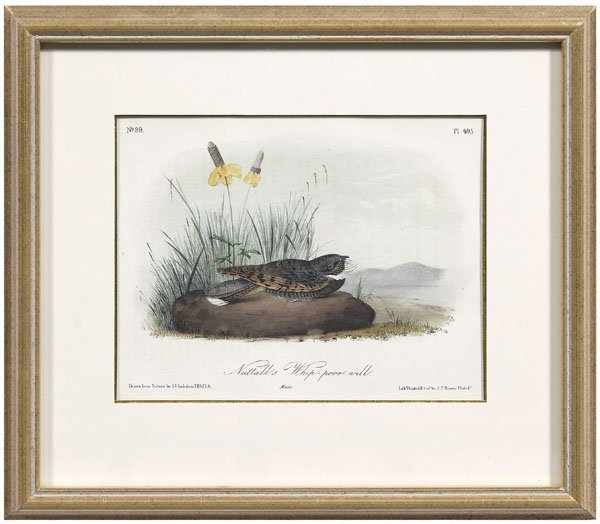 248: 17 Octavo Audubon prints: