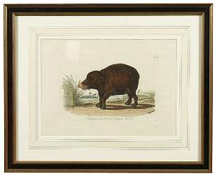 Four animal engravings,