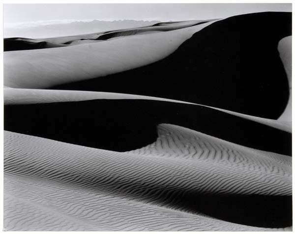 327: Edward Weston photograph,