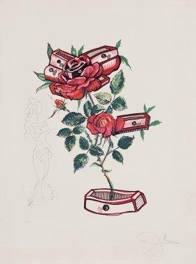 Salvador DalÃ, Rosa E Morte Floriscens