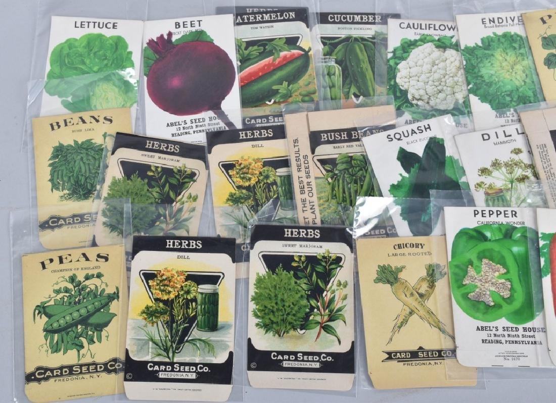 LOT of COLOR SEED ADVERTISING, PACKETS and MORE - 2