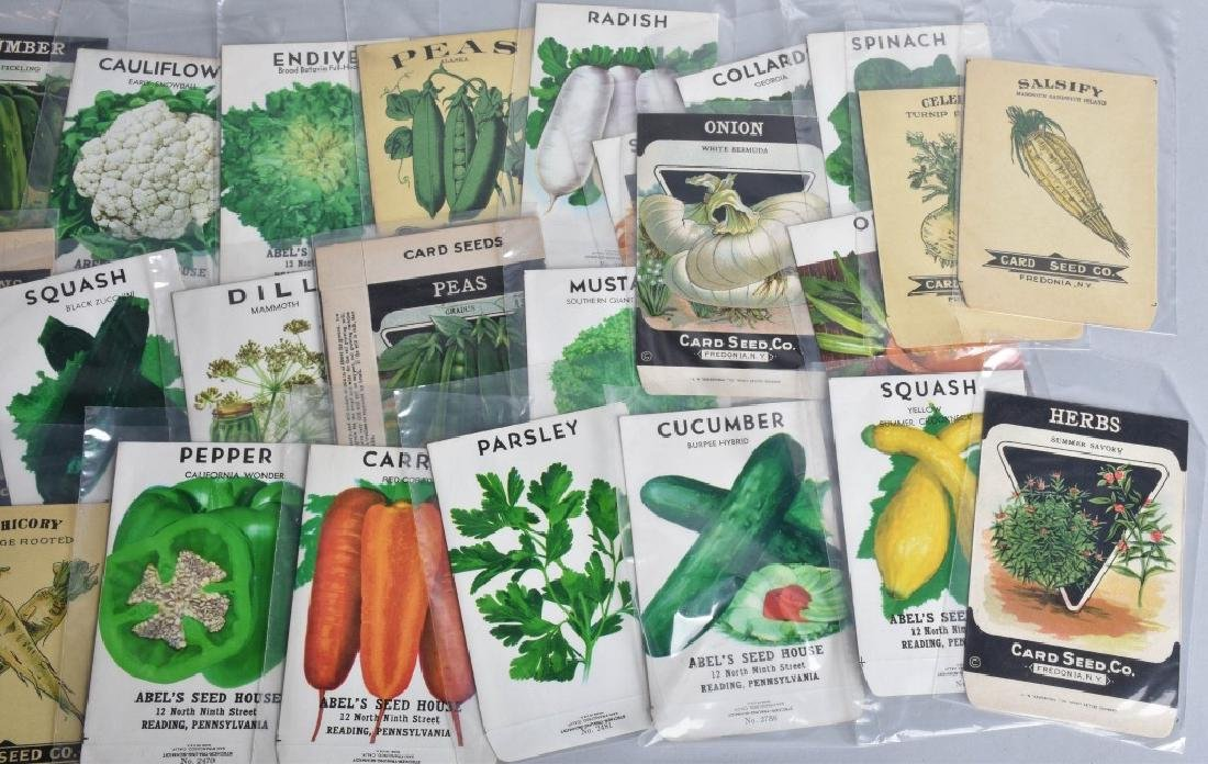 LOT of COLOR SEED ADVERTISING, PACKETS and MORE - 3